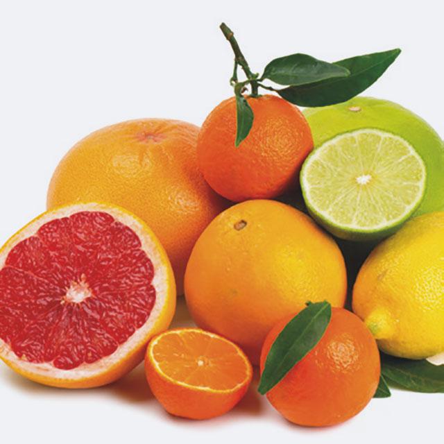 Citrus Aufgussmonat März